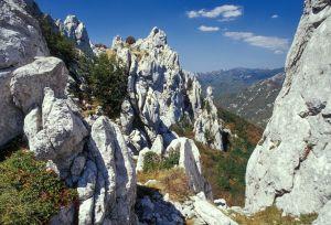 Kroatien-13.jpg