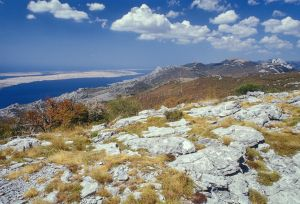 Kroatien-15.jpg