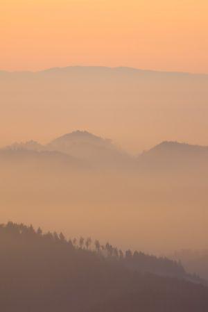 Schwarzwald-3.jpg