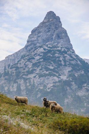 Berge-43.jpg