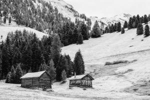 Der erste Schnee, auf dem Weg zur Schlüterhütte (Villnößtal)